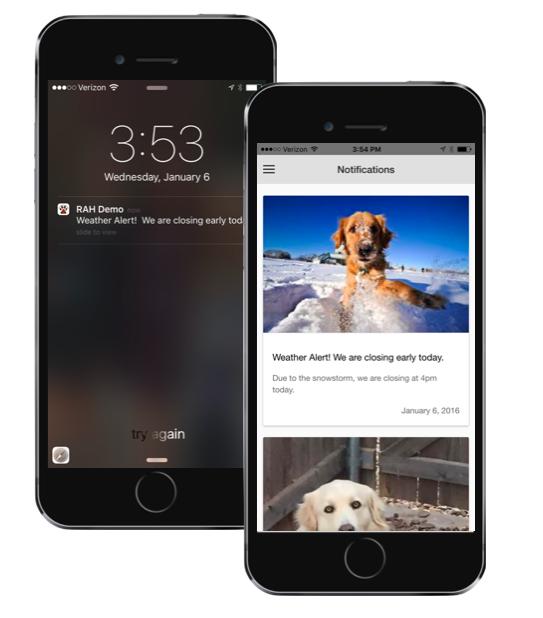 Screen shot of app.
