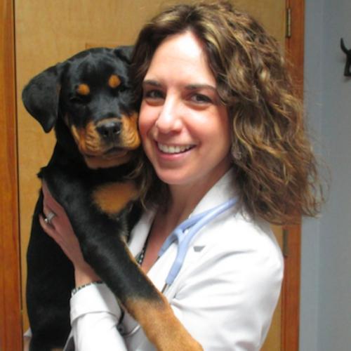 Techie veterinary alumna creates Vet2Pet app to boost pet health