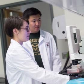 School of Biomedical Engineering receives accreditation