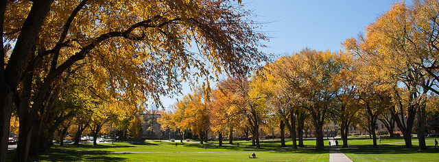 Leaves turn color at CSU's Oval
