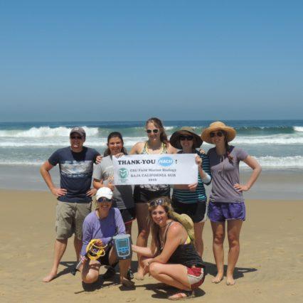 Cultural experiences, marine biology combine in Todos Santos