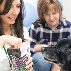 Pet Health: 'You are what you eat' is true for pets, too