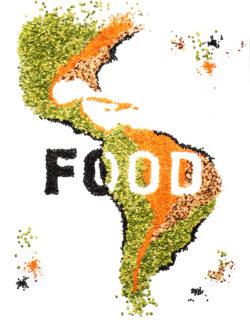 food_bean_illustration-kw