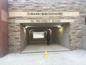 prospect-underpass-open