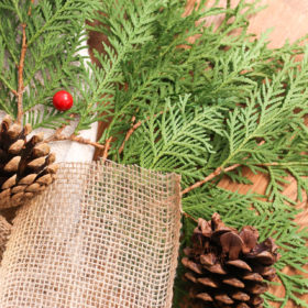 Reducing stress of the holidays