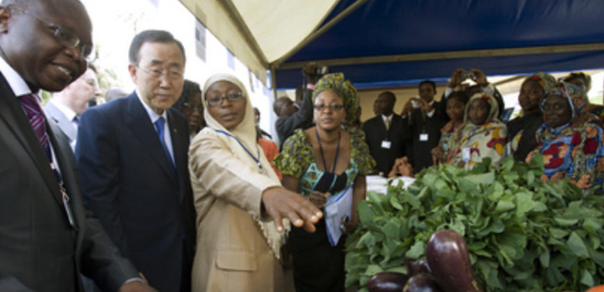 Diplomats in African produce market