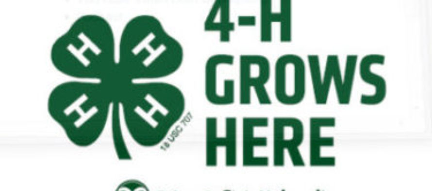 New Colorado 4-H Director Hired