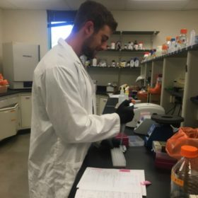 Nutrition honors student receives national Undergraduate Research Fellowship