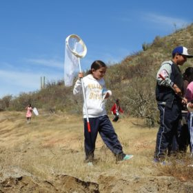 CSU, Mexican university students partner to host educational BioBlitz in Mexico