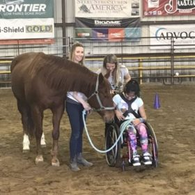 Creating real impact with Equine Assisted Therapies