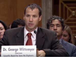 G Wittemyer July 2015 U.S. Senate hearing