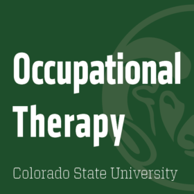 Open tenure-track faculty positions in OT