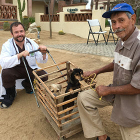 Building community: One veterinary researcher forges connections with an entire Mexican town