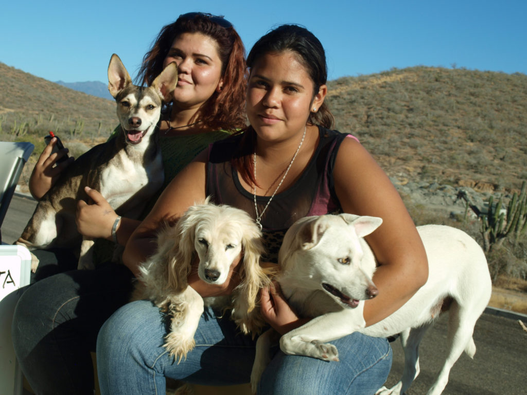 """Residents of Todos Santos, Mexico, bring their dogs to the CSU Center for health assessments. """"It starts with the kids. So many families came to this project because their kids were involved,"""" said CSU veterinarian Dr. Cody Minor. (Photo by Cody Minor)"""