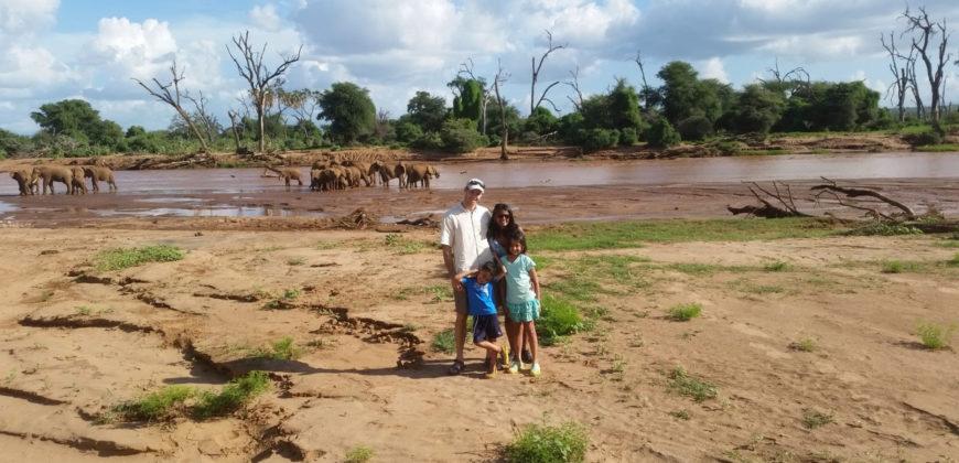 Wittemyer family elephants