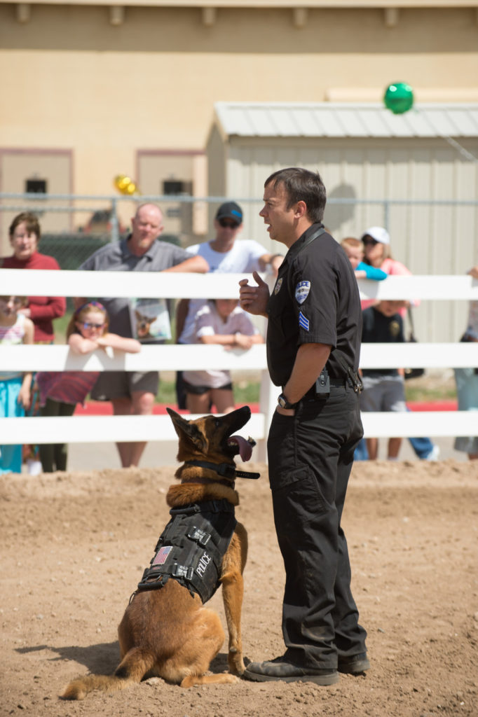 The Fort Collins Police Department K-9 Unit will offer demonstrations at 11 a.m. and 1 p.m. John Eisele/CSU Photography