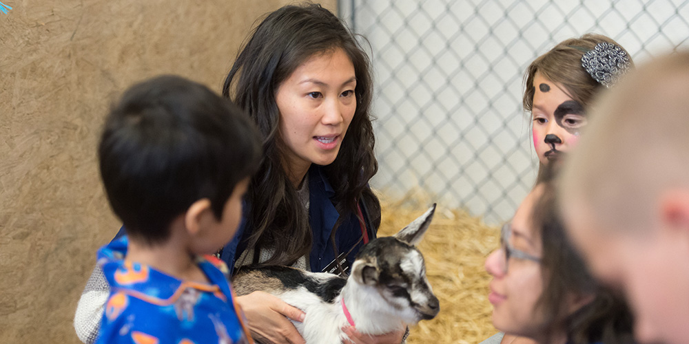 State Of Care See It Up Close At The Csu Veterinary Teaching