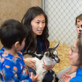 State of Care: See it up close at the CSU Veterinary Teaching Hospital Open House