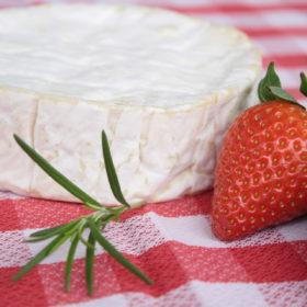 Recipe: Brie cheese quesadillas with strawberry salsa