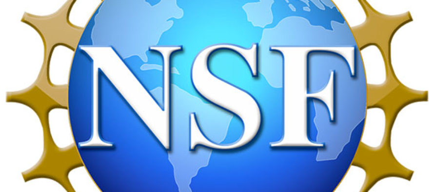 Eight students receive NSF graduate fellowships