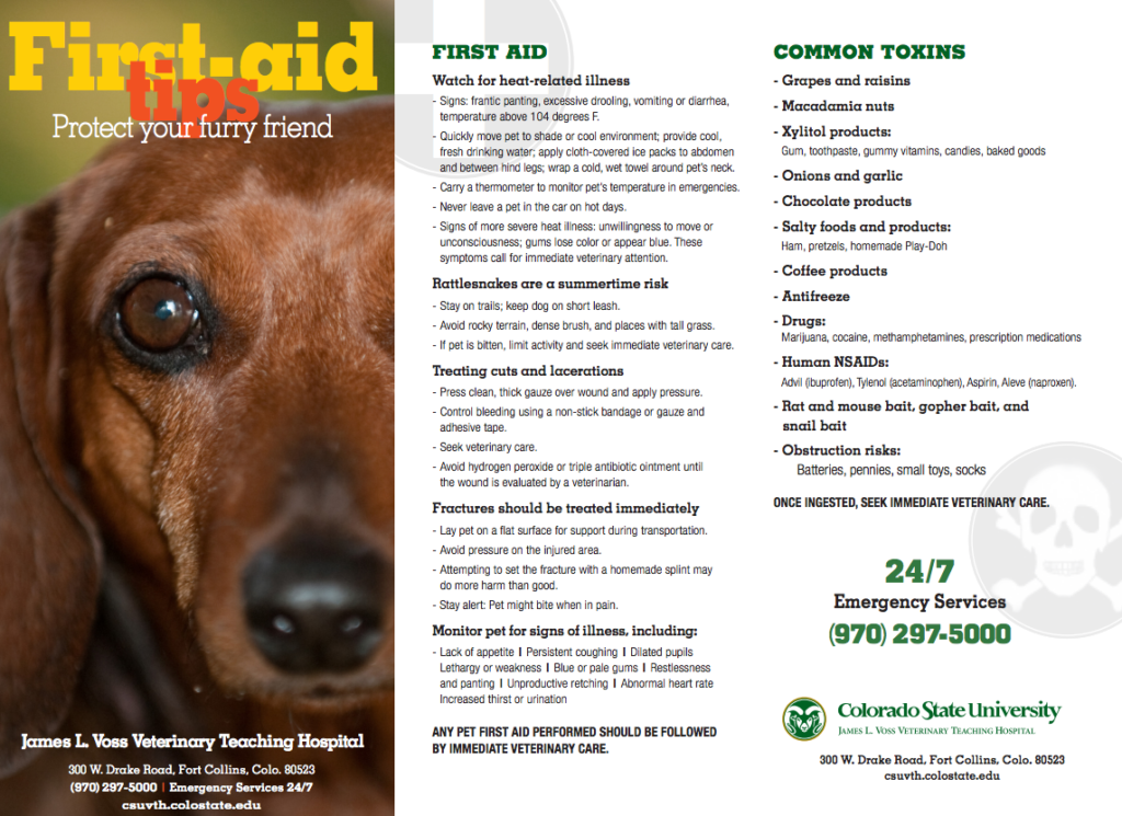 Click to print CSU's first-aid tips.