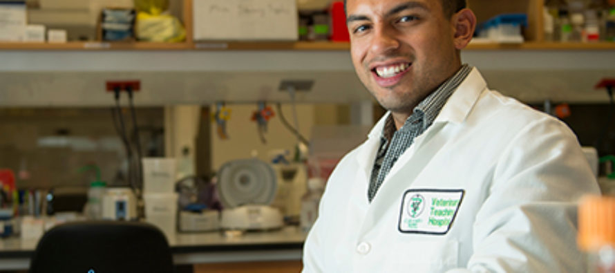 Graduate student earns top fellowship to support study of antimicrobial resistance