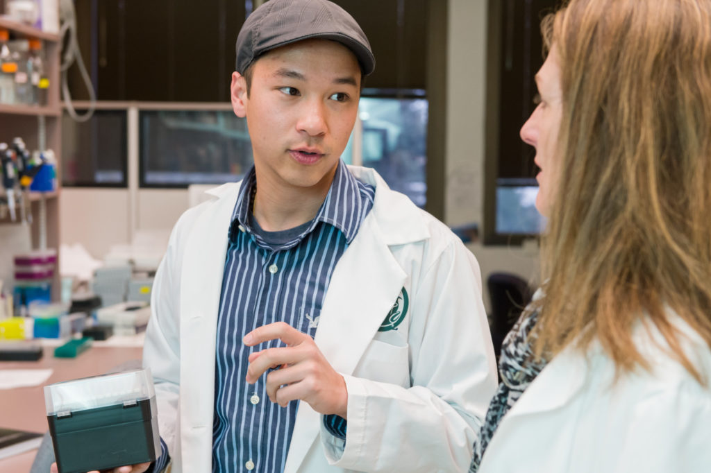 Colorado State University DVM/PhD student Elliott Chiu works on research with Microbiology, Immunology and Pathology professor Sue VandeWoude, April 2, 2015.