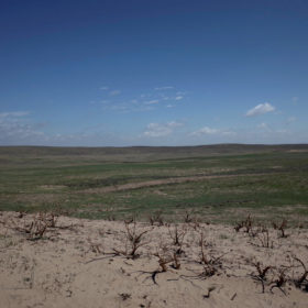 Rangelands are slow to  recover in Northeast Colorado
