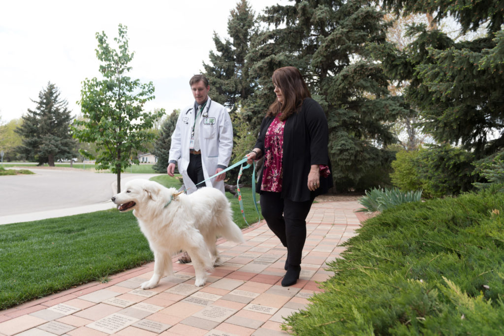 Colorado State University post doctoral Jacob Cawley examines Barb Mason's dog Lilly at the Veterinary Teaching Hospital, May 2, 2017.