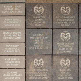 Personalized bricks being installed at on-campus stadium