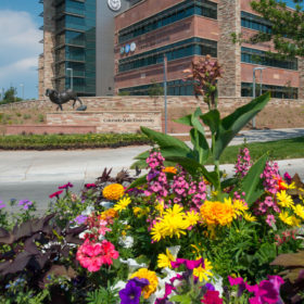 New CSU Health and Medical Center hosts Community Open House July 29