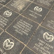 Nearly all donor bricks in place at new stadium