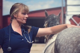 Dr. Laura Bledsoe touching the back of a horse