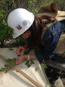 color photo of Hannah Riedl studying plants in northwestern Colorado