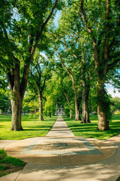 Early morning on CSU's Oval
