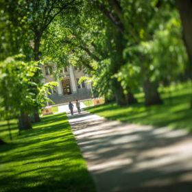 Green spaces define CSU