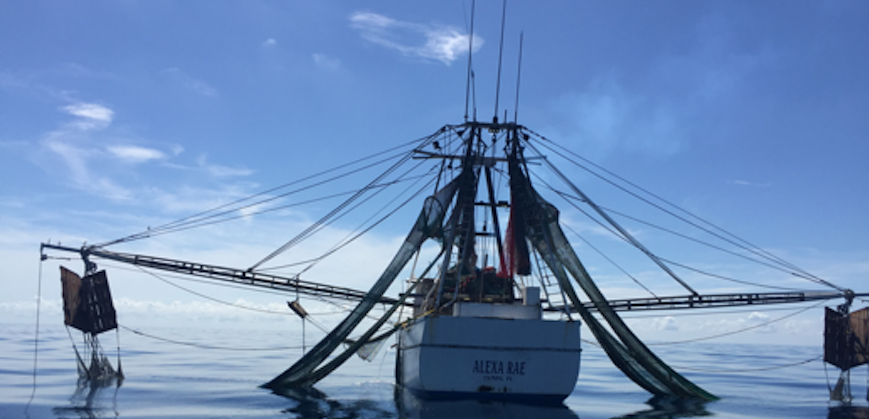 color photo of shrimp boat Alexa Rae in Key West, Florida