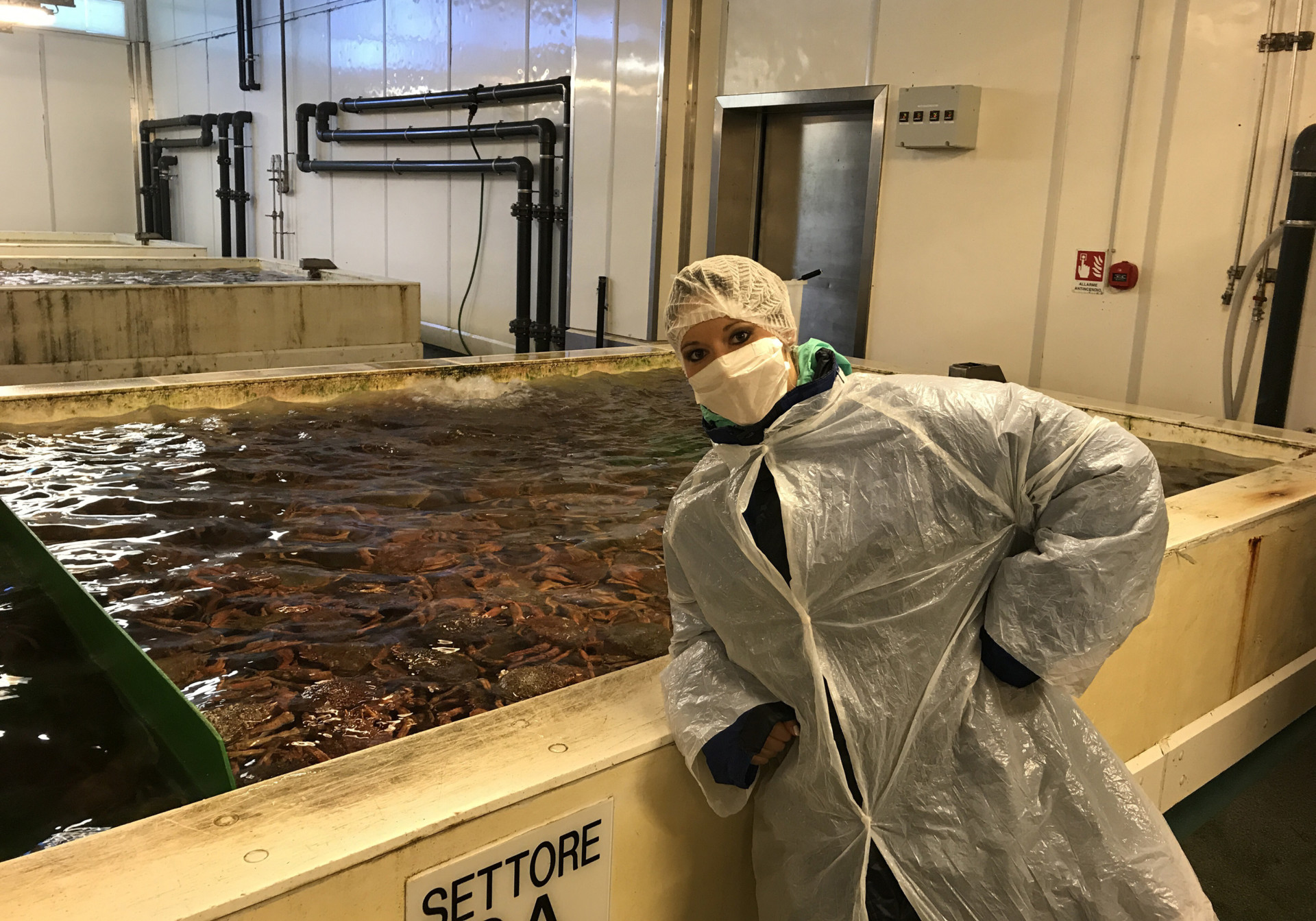 Malinda DeBell in front of fish tank at fish plant in Italy