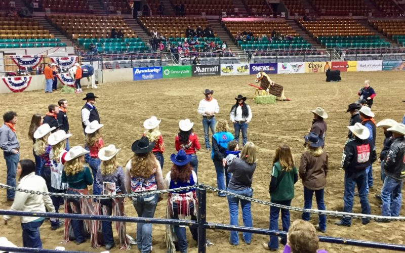 Exceptional rodeo participants in arena