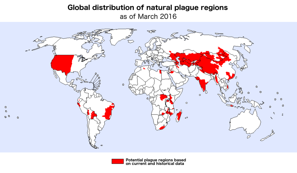 global distribution of plague