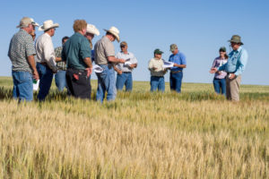 CSU Wheat Field days photo of on-farm seminar