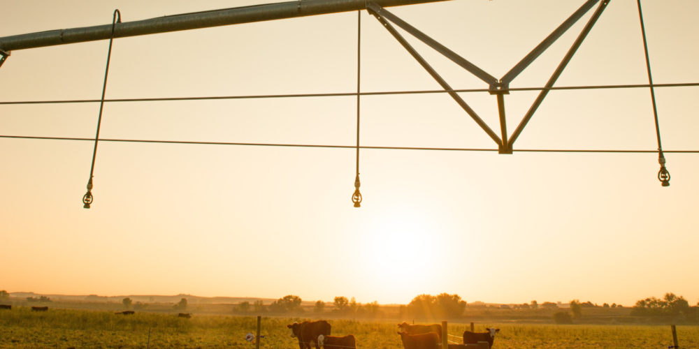 New Center Pivot Irrigation Sprinkler system installed at the Agricultural Research Development and Education Center at Colorado State University