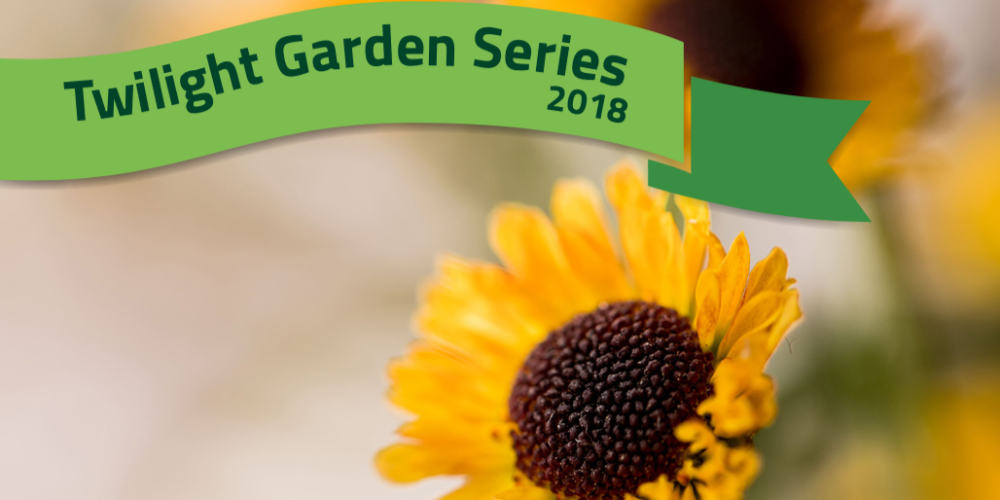 Picture of a sunflower announcing the Twilight Gardening Series for 2018