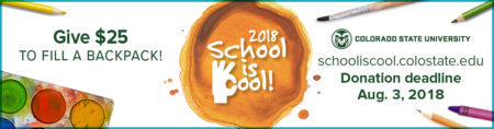 School is Cool logo 2018