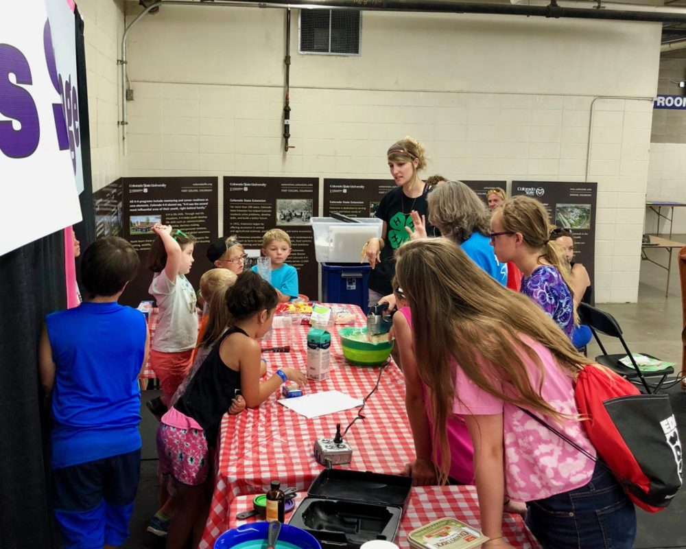 Denver 4-H team member interacting with youth at Denver County Fair 2018.