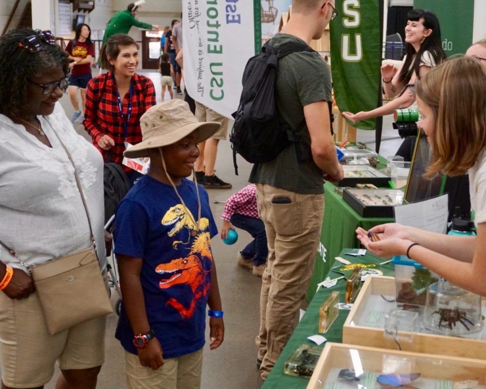 Young boy smiles as he examines Madagascar hissing cockroach from the CSU Bug Zoo at the 2018 Denver County Fair.