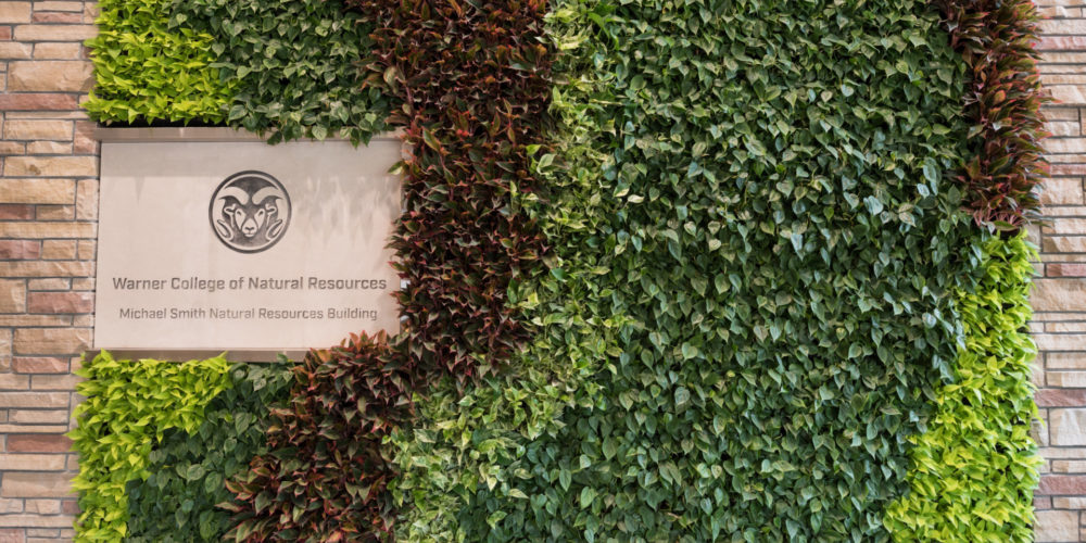 Living Wall in Michael Smith Natural Resources Building