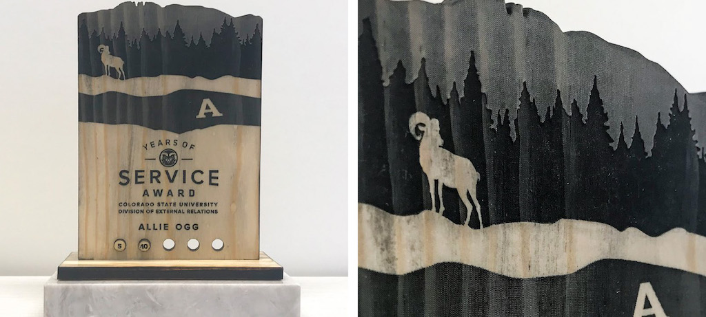 DER service plaque design