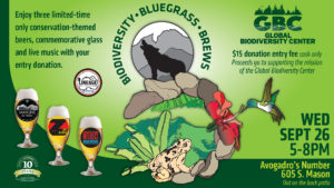 poster for biodiversity bluegrass and blues event