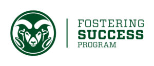 FosteringSuccess